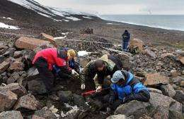 Members of an expedition digging on the coast of Franz Josef Land in Russia
