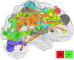 Mental maturity scan tracks brain development