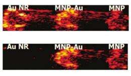 Multifunctional nanoparticle enables new type of biological imaging