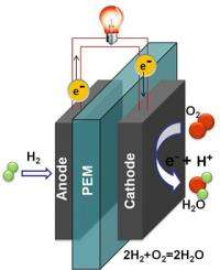 New catalyst of platinum nanoparticles could lead to conk-out free, stable fuel cells