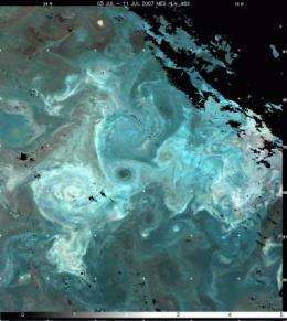 Ocean stirring and plankton patchiness