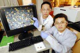 Organic solvent system may improve catalyst recycling and create new nanomedicine uses