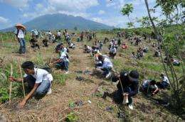 Philippine environmentalists have set a world record for the most trees planted simultaneously