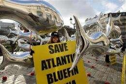 Progress made on protecting sharks, groups say (AP)