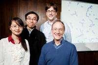 Self-assembling structures open door to new class of materials
