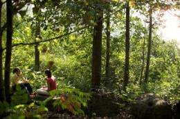 Spending time in nature makes people feel more alive, study shows