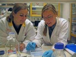 Superantigens could be behind several illnesses