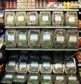 Supermarket lighting enhances nutrient level of fresh spinach