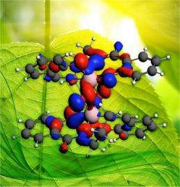 Taking the Mystery Out of Photosynthesis