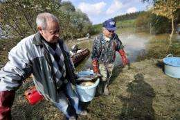 The spill wiped out all life in the Marcal river, a tributary of the Danube
