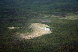 This 2008 handout photo courtesy of the Wood Buffalo National Park shows the world's biggest beaver dam