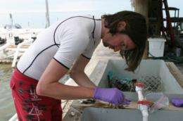 UF marine researchers rush to collect samples as oil threat grows