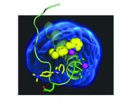 Unraveling Alzheimer's: Simple small molecules could untangle complex disease