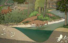 Using discards, scientists discover different dinosaurs' stomping grounds