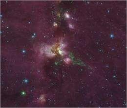 Water around massive young stars