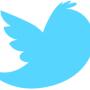 Twitter shares plunge in black week for social media