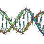 Researchers overturn wisdom regarding efficacy of next-generation DNA techniques