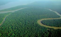 Hydroelectric dams may jeopardize the Amazon's future