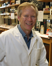 Researchers explore energy, health potential of wastewater microbial ecosystem