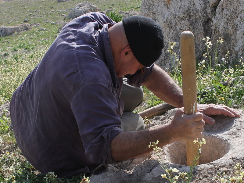 Where bread began: Ancient tools used to reconstruct—and