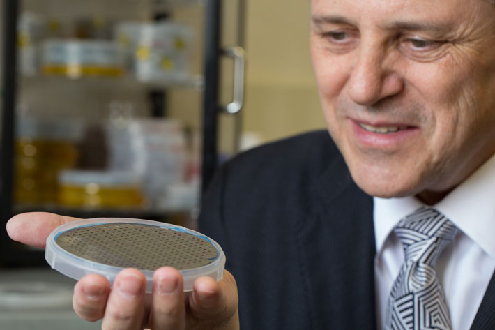 Detecting the undetectable: New chip identifies chemicals in ultratrace amounts