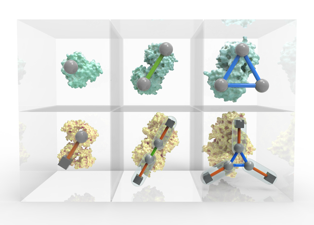 Periodic Table of Protein Complexes presented