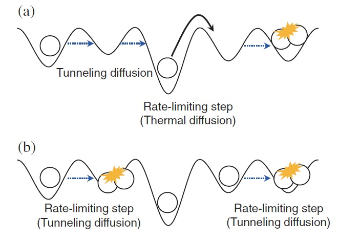 First Observation Made Of Quantum Tunneling Diffusion Of Hydrogen