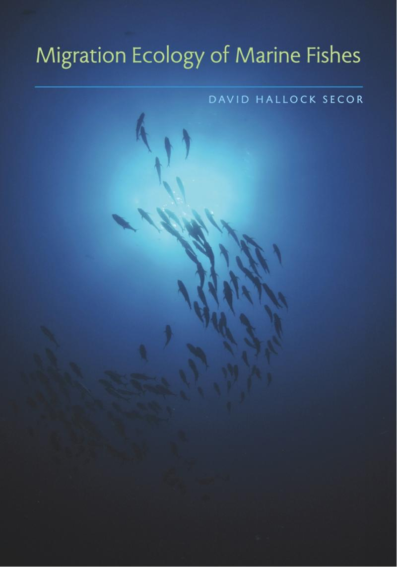 a research on fish movement