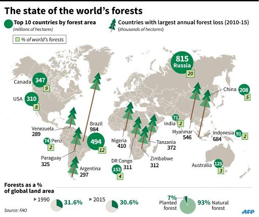 Map Of World Forests.Native Tribe Fights To Save Boreal Forest In Quebec