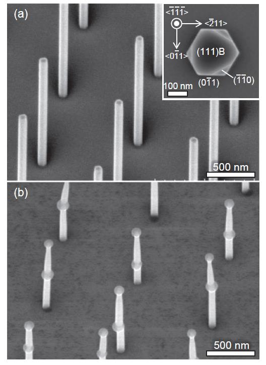 Novel method of making high quality vertical nanowires august 29 2016 japan society of applied physics pronofoot35fo Image collections