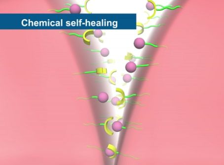 biomimicry self healing plastics Inspired by biological systems that heal themselves when damaged, a self-healing polymer, created at the beckman institute, university of illinois is being applied to the development of a structural polymeric building material, such as cladding, with the ability to self-heal cracks.