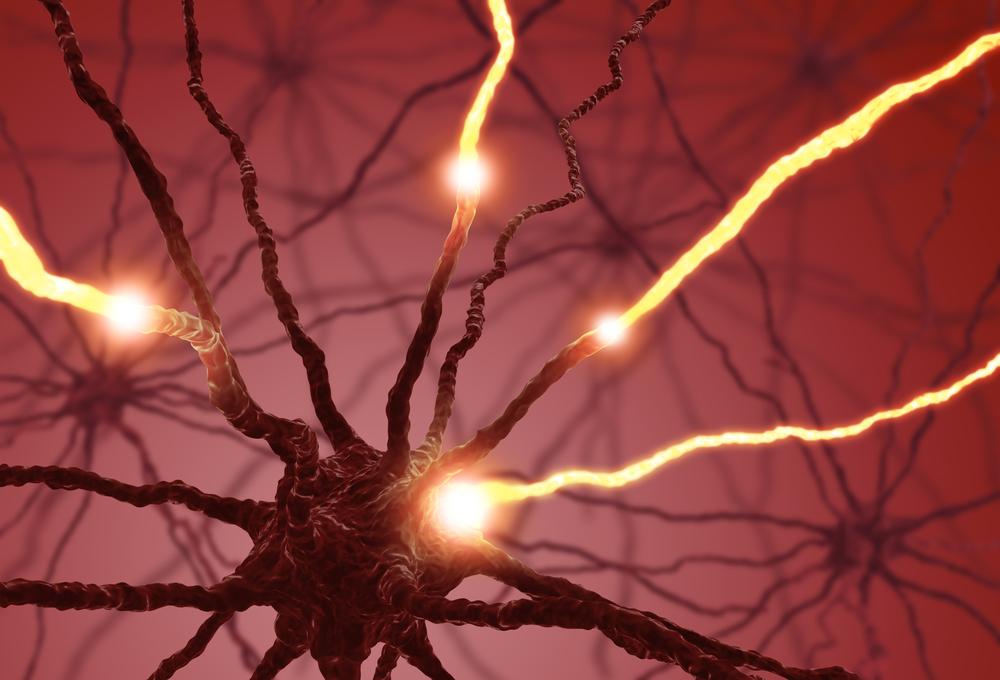 RIKEN các nhà nghiên cứu viện đã phát triển một cách mới và không xâm lấn kỹ thuật để phát hiện những thế hệ các tế bào thần kinh mới từ các tế bào gốc vào não.