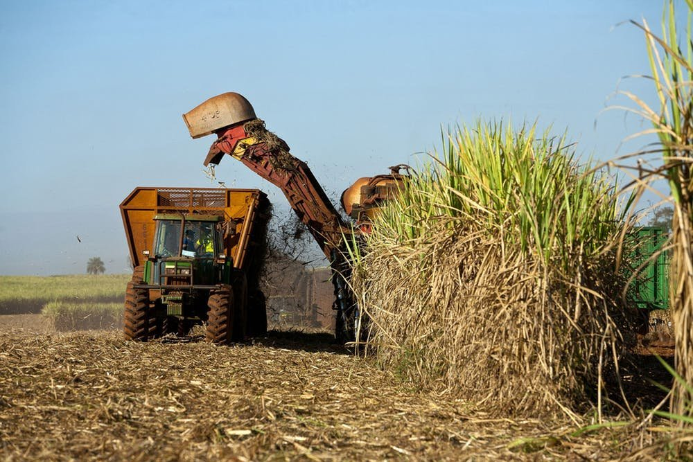 solid agricultural essay Types of solid waste solid waste can be classified into different types depending on their source: a) household waste is generally classified as municipal waste, b) industrial waste as hazardous waste, and c) biomedical waste or hospital waste as infectious waste.