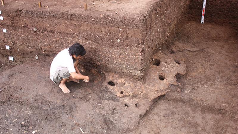 31 archaeologis