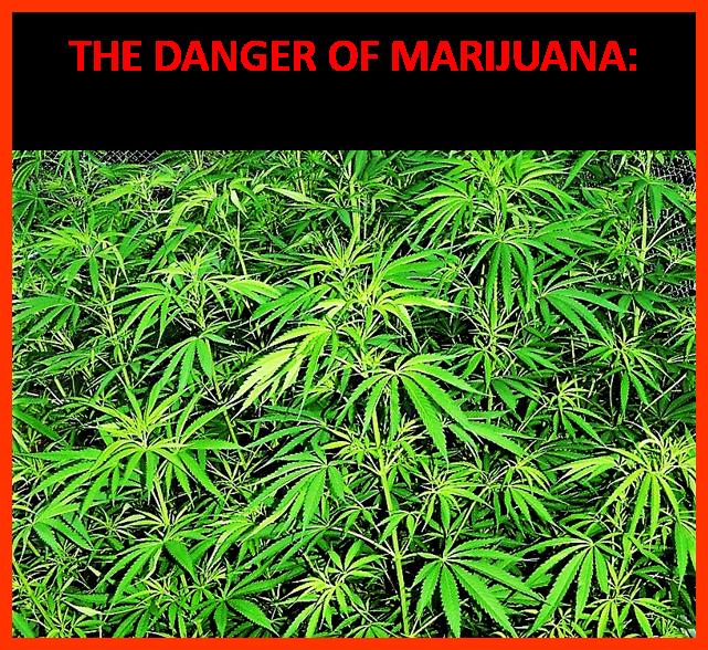 cannabinoids induce seizures by acting through the cannabinoid cb1