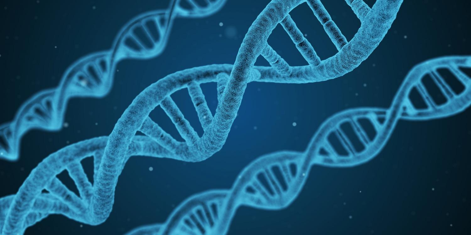 Dna linked to homosexuality