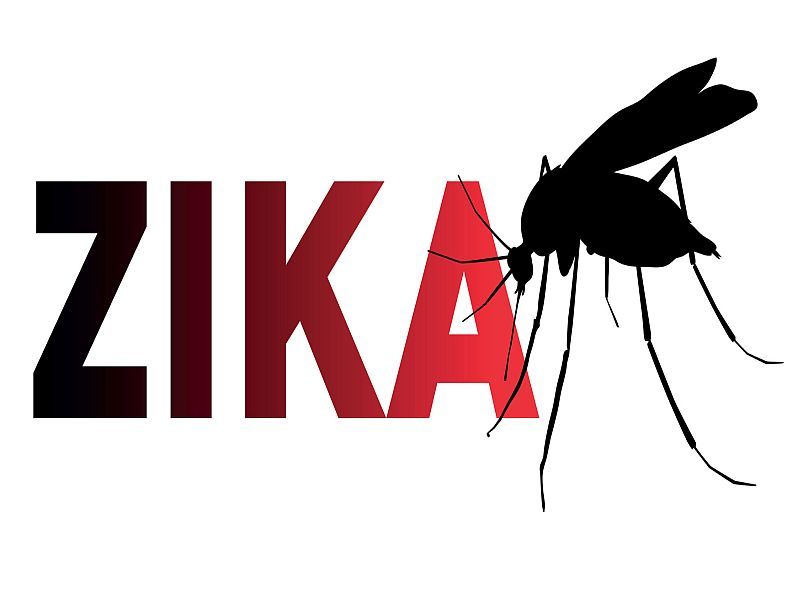 Image result for zika images