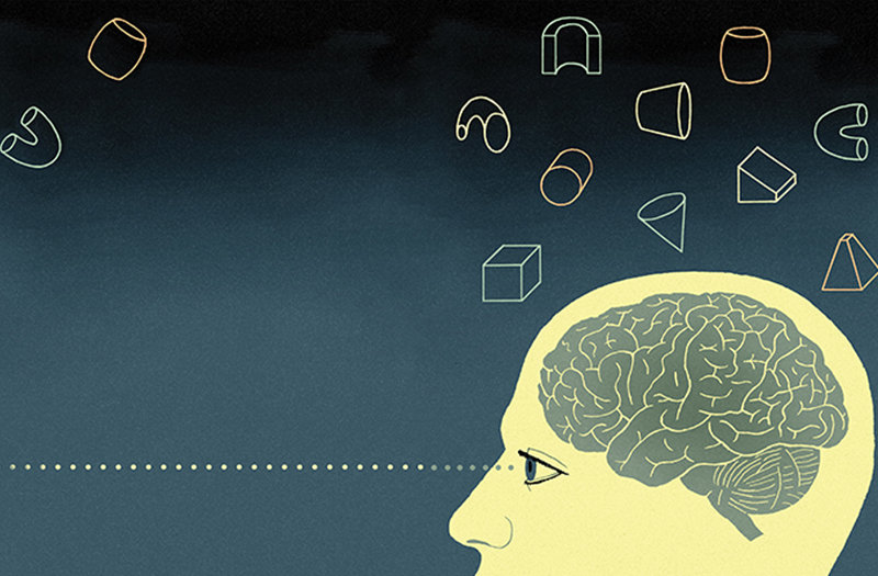 How Our Brains Can Recognize Previously Unseen Scenes Objects Or
