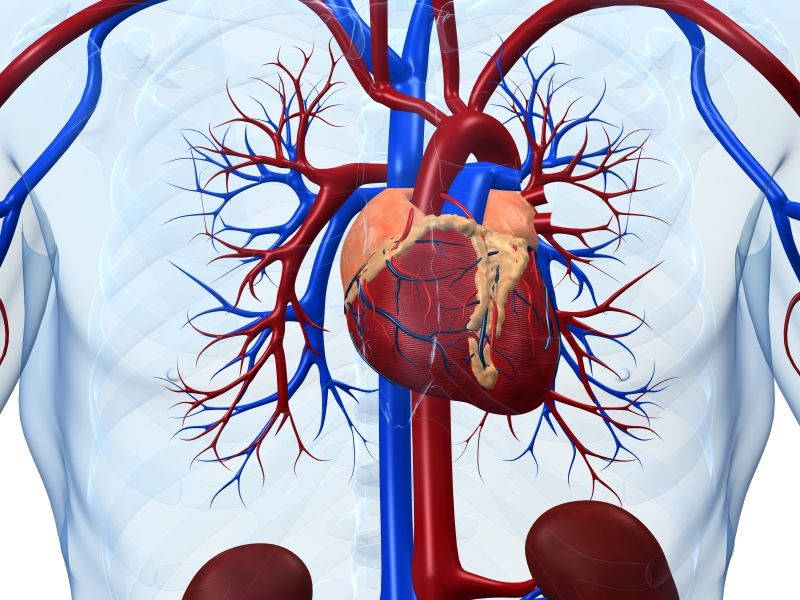 New appropriate use criteria issued for valvular heart disease
