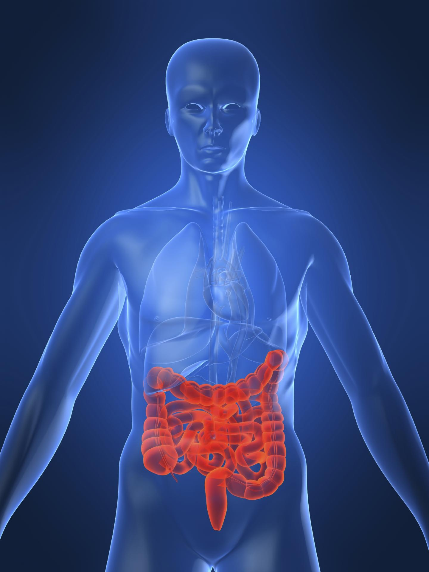 What are the symptoms of Crohns disease How is it diagnosed