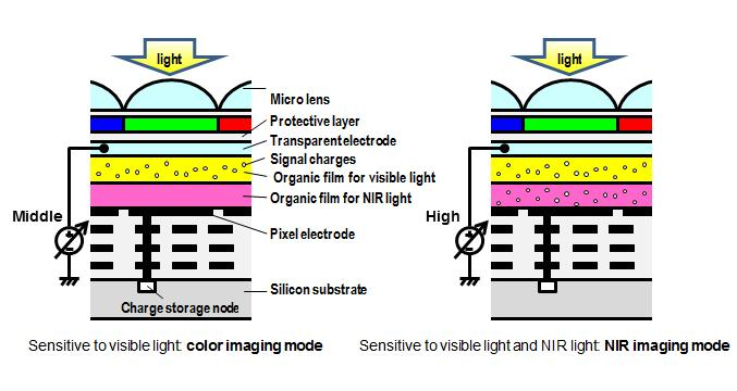Organic Cmos Image Sensor With Electrically Controllable