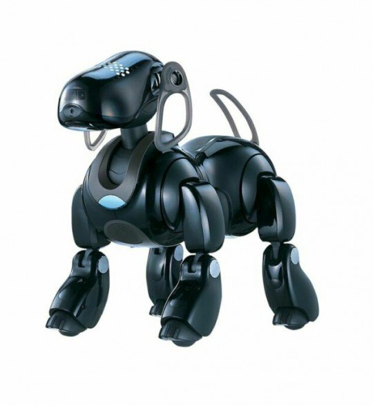 Sony S Aibo Seemed Tough Act To Follow But Stay Tuned
