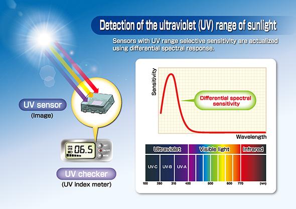 Ultraviolet Light Sensor For Wearable Devices