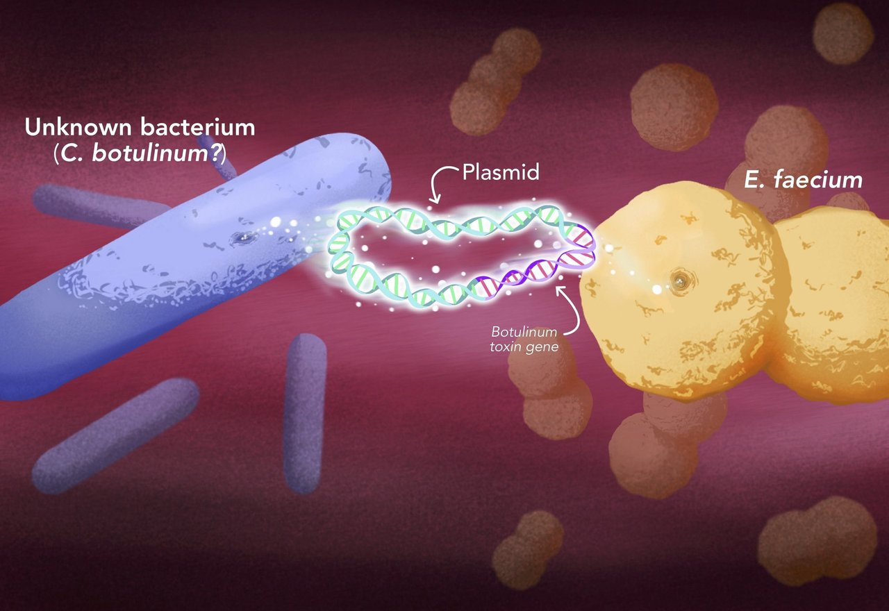 comprehensive analysis of microorganism that can cause disease found in toxins You can get a comprehensive understanding of the disease here and get the information about the latest treatments and get professional advices  toxins in blood.