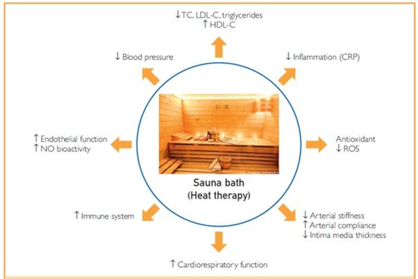 Frequent Sauna Bathing Has Many Health Benefits New