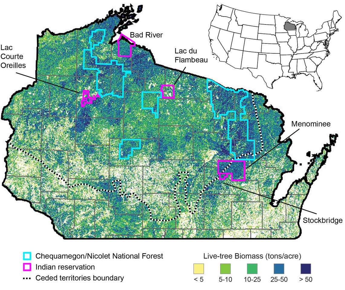 Tribal Forests In Wisconsin Are More Diverse Sustainable