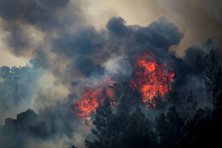 "Image result for PORTUGAL and Spain Wildfires ""AUGUST 9, 2018"", -interalex"