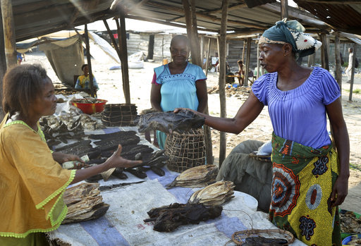 Congo's Ebola outbreak poses challenges for bush meat