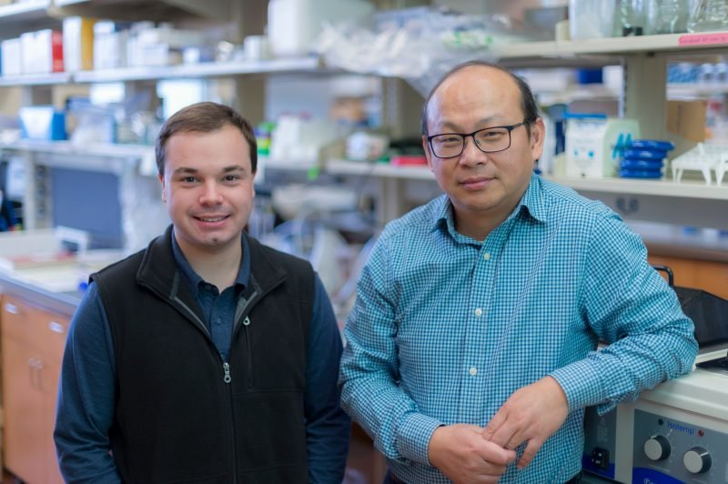 identify new target for developing precision treatment in malignant ...