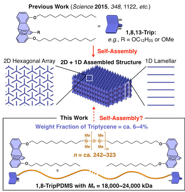 self assembling silicone based polymers